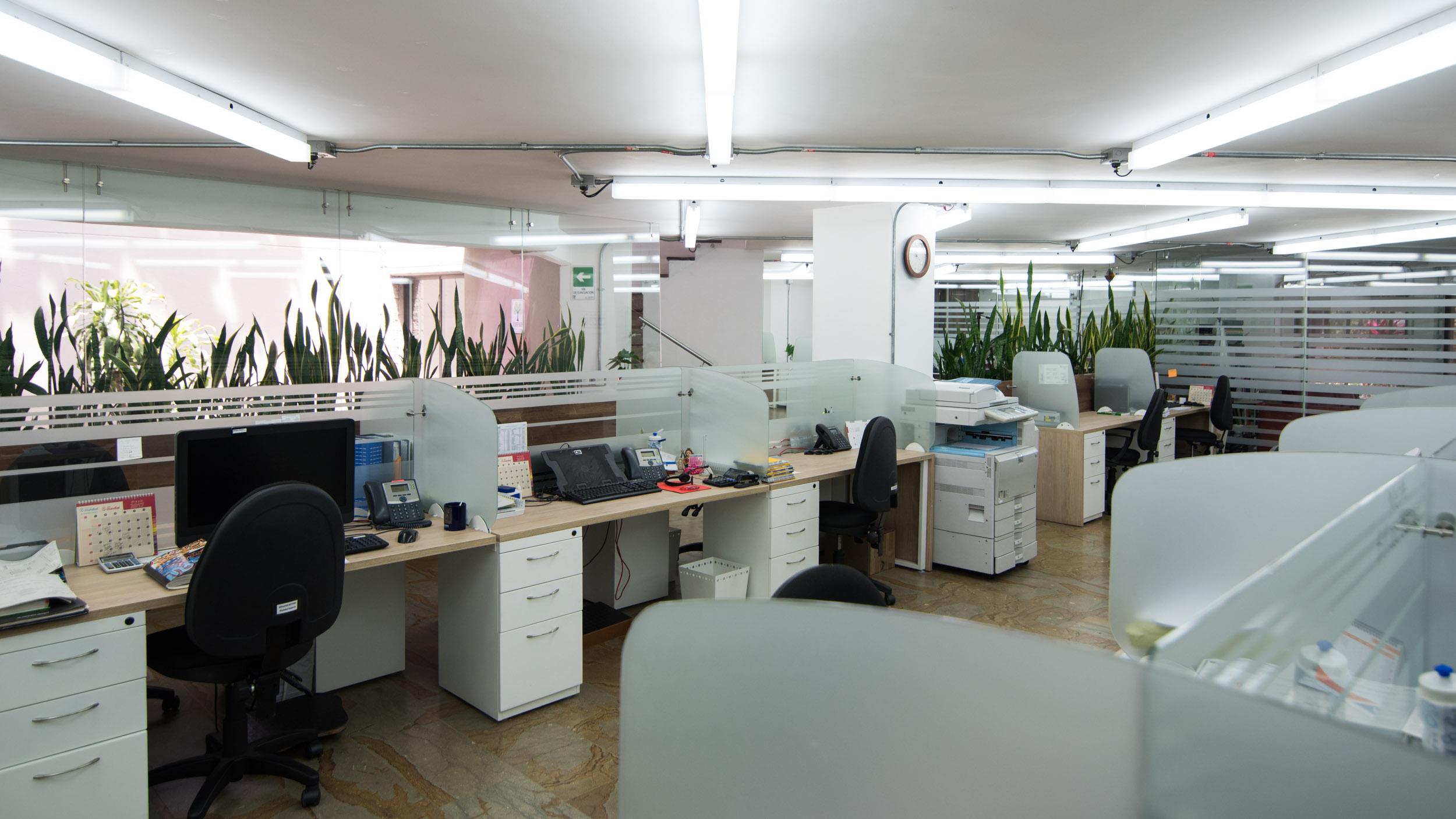 diseño de locales y oficinas